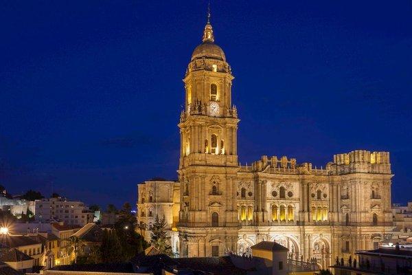 Petit Palace Plaza Malaga - фото 23