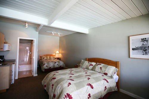 Kelowna Lakeshore Inn - фото 4