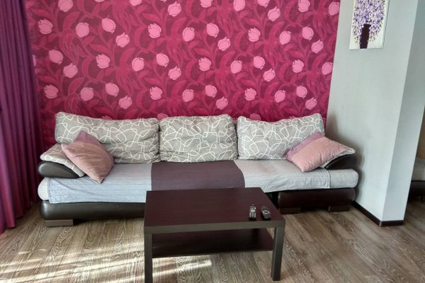 Apartment Krasnaya 2 - фото 6