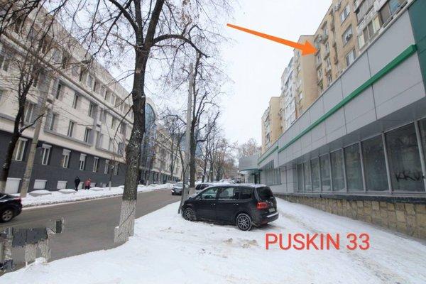 Main Center Puskin street Chisinau - фото 14
