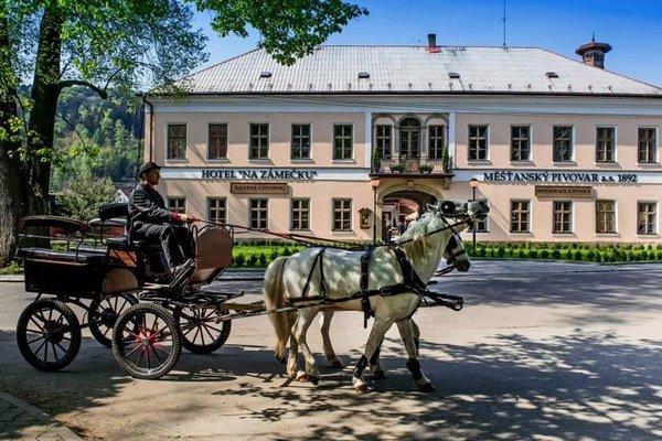 Hotel Na Zamecku - фото 22