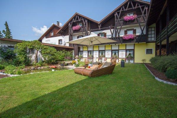 Hotel Waldblick - фото 9