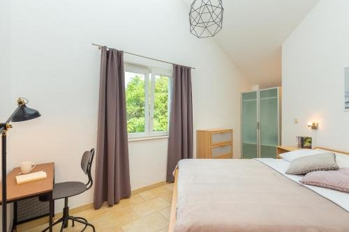 Apartment Fuscus A1 - фото 1