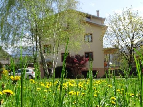 La casa di Clara - фото 6