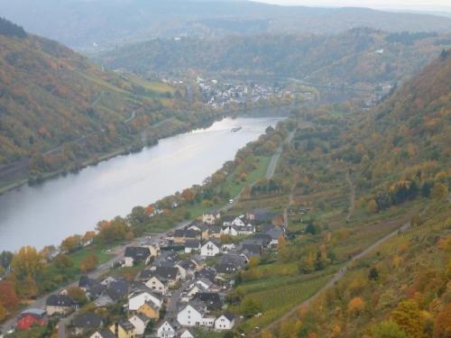 Ferienwohnungen Scheid Volker - фото 6