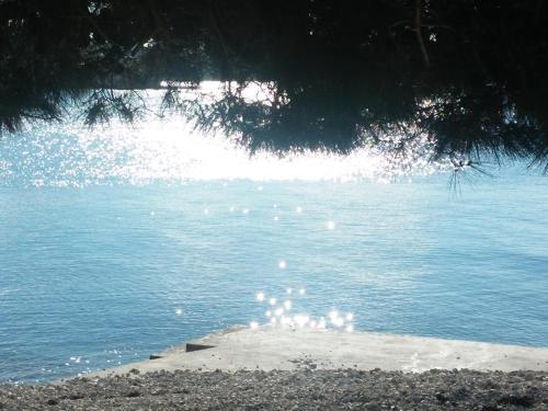 Apartments Manuela - фото 4