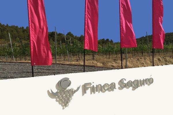 Finca Seguro - фото 18