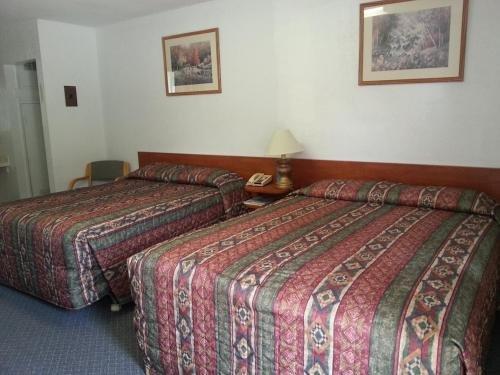 Evening Star Motel - фото 2