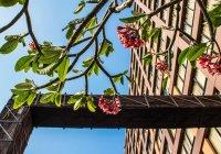 Отзывы Siam@Siam, Design Hotel Bangkok, 5 звезд