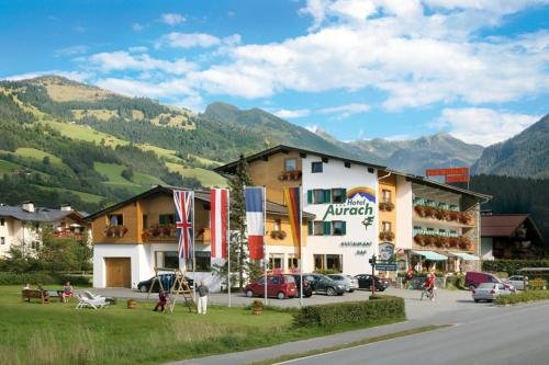 Hotel Aurach - фото 21