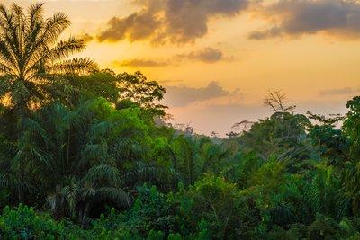Анапа - Либерия